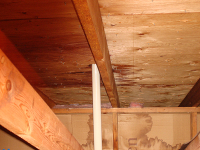 Photos Professional Home Inspection
